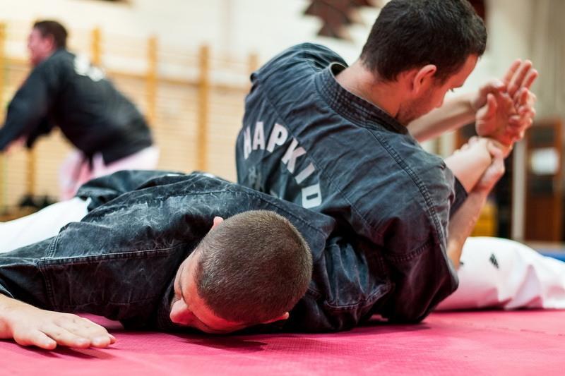 2014. április 26. - Hapkido Mesterképzés